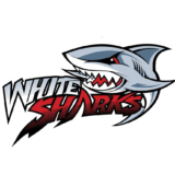 Itapema White Sharks