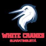 Guaratinguetá White Cranes