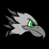 Boa Vista Falcons